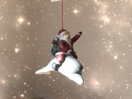 サンタクロースって本当にいるんですよ!:3歳児がくれた答えと世界にちらばるサンタがいる証拠
