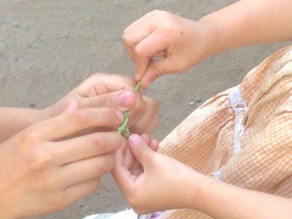 ウイルス研究者もすすめる手の洗い方:ナチュラル手洗い